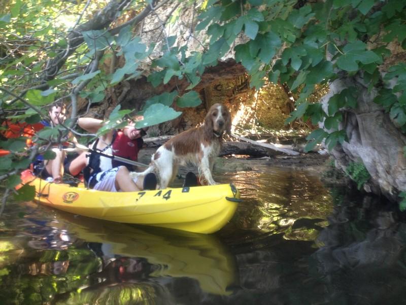 Kayak y Piragüismo en las Lagunas de Ruidera