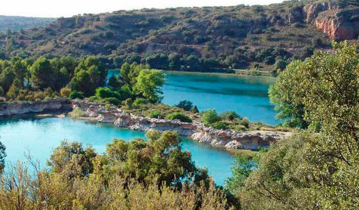 Vegetación Lagunas de Ruidera