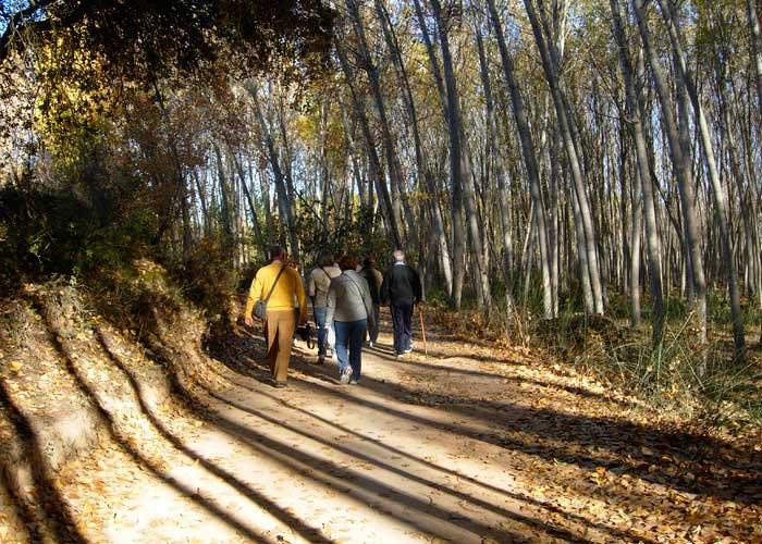 Rutas de senderismo en las Lagunas de Ruidera
